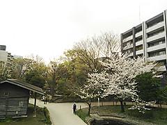 Ncm_0279