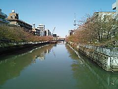 Kotobashi5_20130408_123035_012