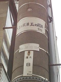 Midori_20130410_121829_007