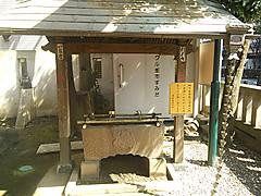 Kinshi_20130315_124027_094