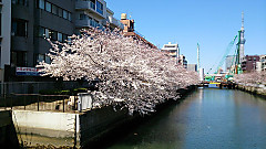 20140331_123647_android