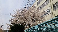 20140401_120221_android