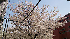 20140401_123647_android