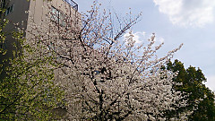 20140402_125451_android