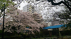 20140403_121816_android