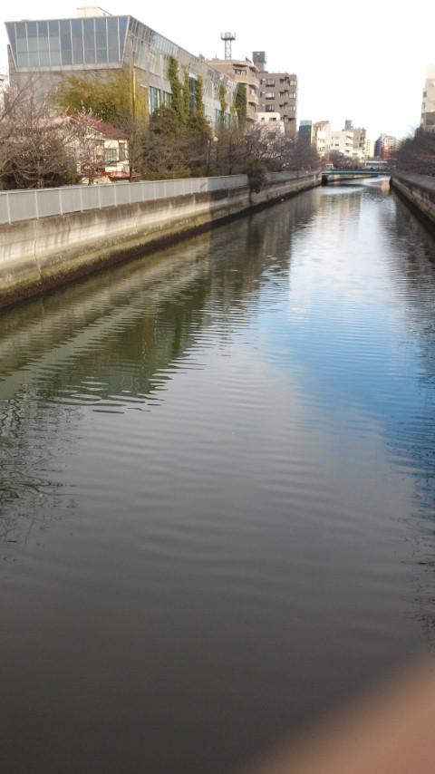【地震】水位が下がった仙台堀川