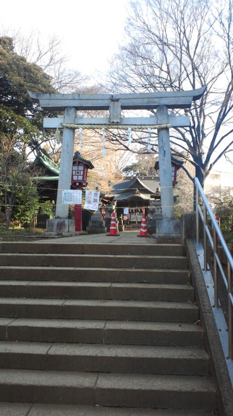 江古田氷川神社の鳥居