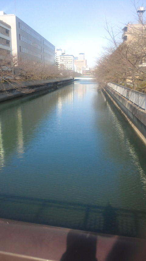 けさの仙台堀川